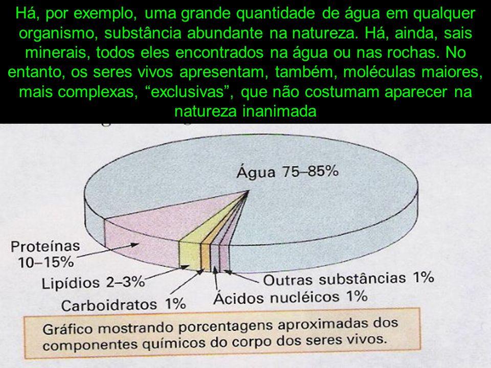 Há, por exemplo, uma grande quantidade de água em qualquer organismo, substância abundante na natureza.