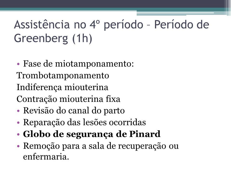 Assistência no 4º período – Período de Greenberg (1h)