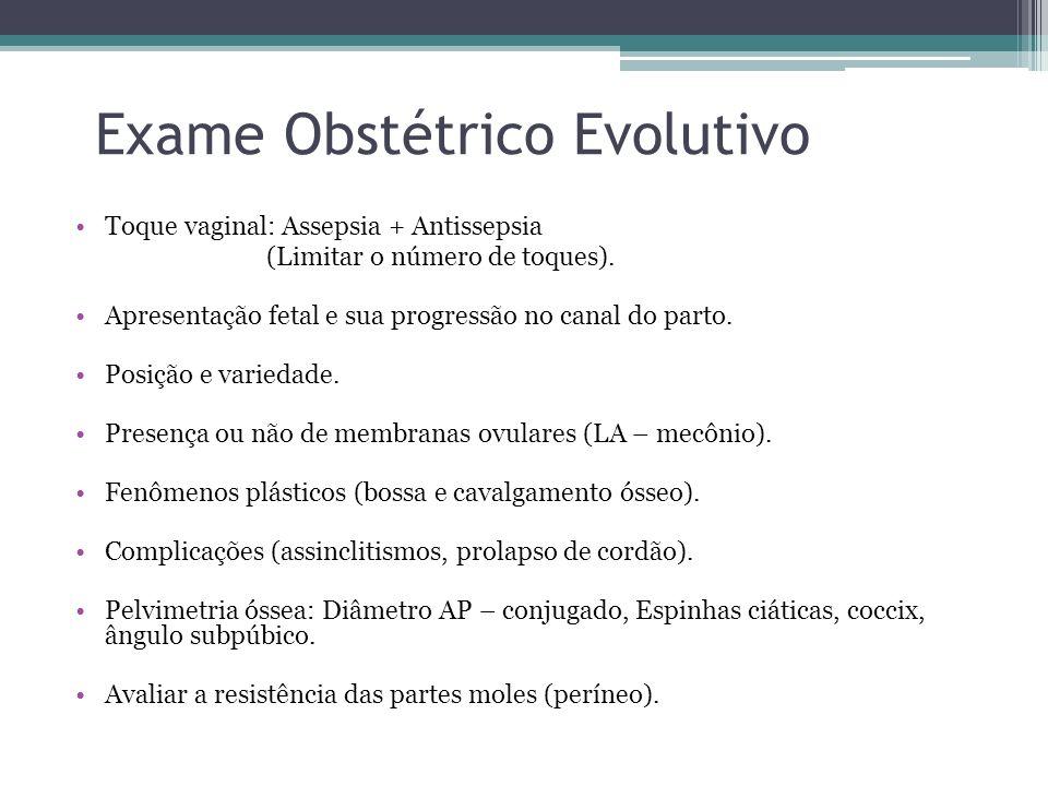 Exame Obstétrico Evolutivo