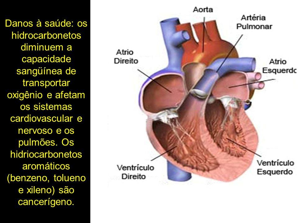 Danos à saúde: os hidrocarbonetos diminuem a capacidade sangüínea de transportar oxigênio e afetam os sistemas cardiovascular e nervoso e os pulmões.