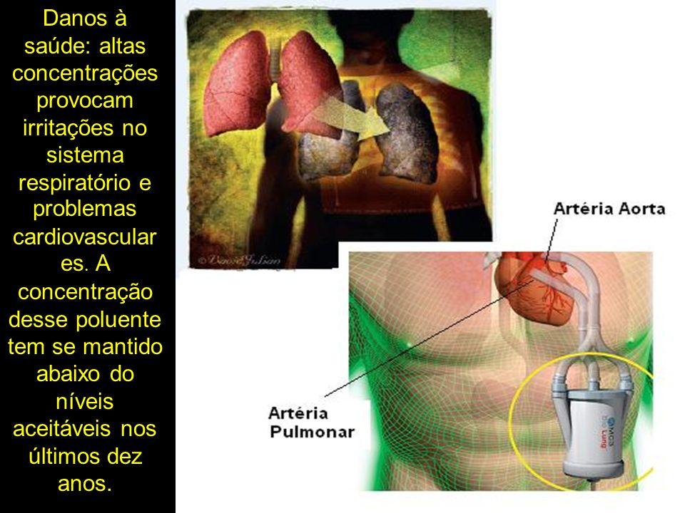 Danos à saúde: altas concentrações provocam irritações no sistema respiratório e problemas cardiovasculares.