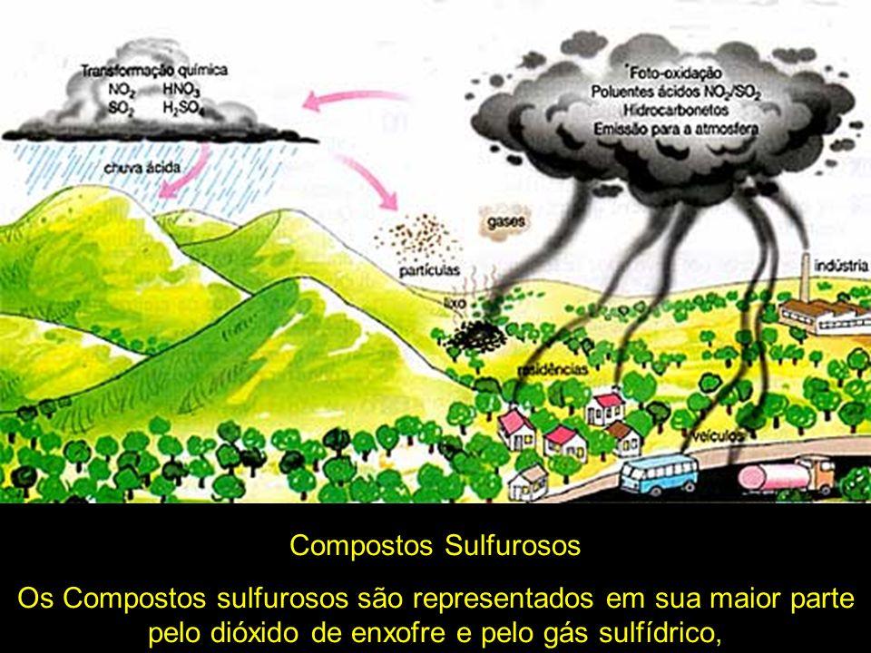 Compostos SulfurososOs Compostos sulfurosos são representados em sua maior parte pelo dióxido de enxofre e pelo gás sulfídrico,