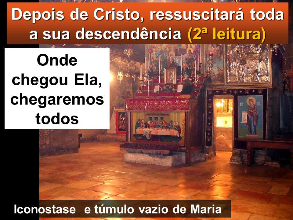 Depois de Cristo, ressuscitará toda a sua descendência (2ª leitura)
