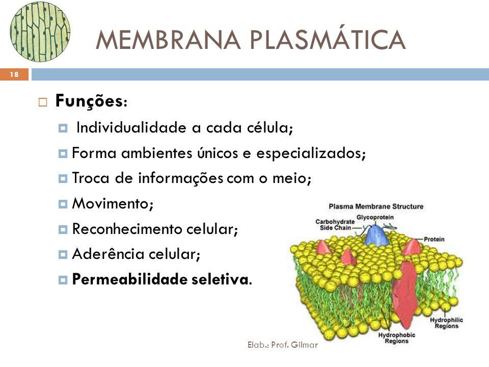 MEMBRANA PLASMÁTICA Funções: Individualidade a cada célula;