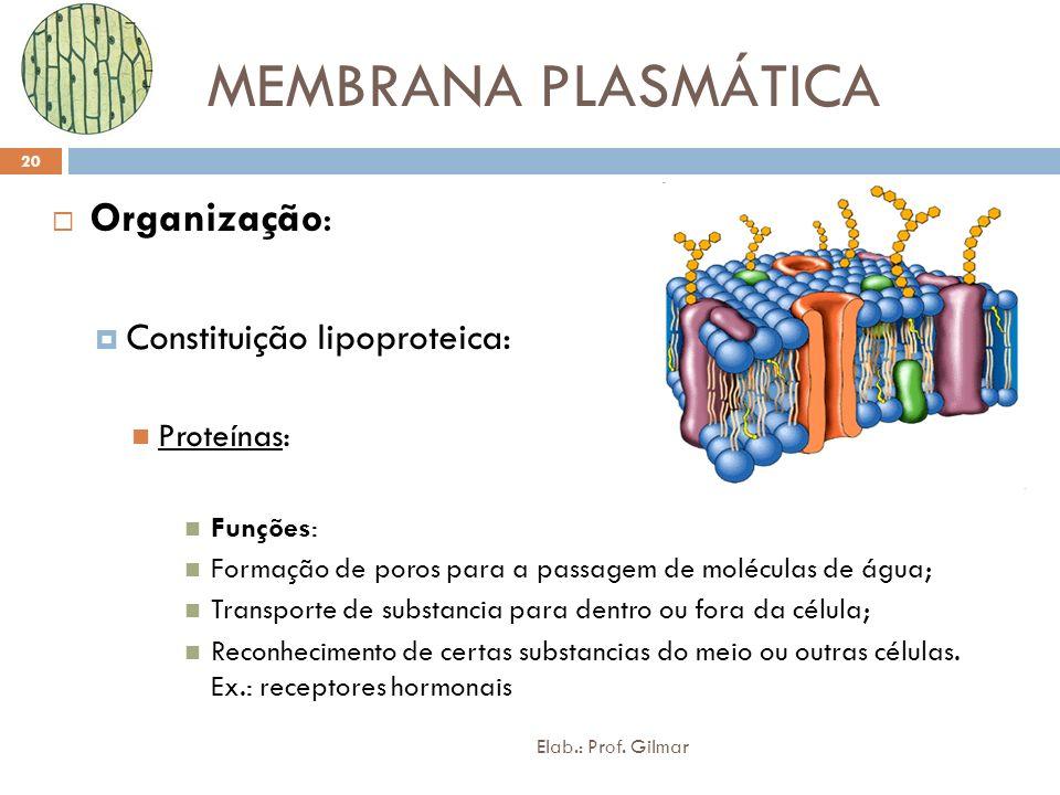 MEMBRANA PLASMÁTICA Organização: Constituição lipoproteica: Proteínas:
