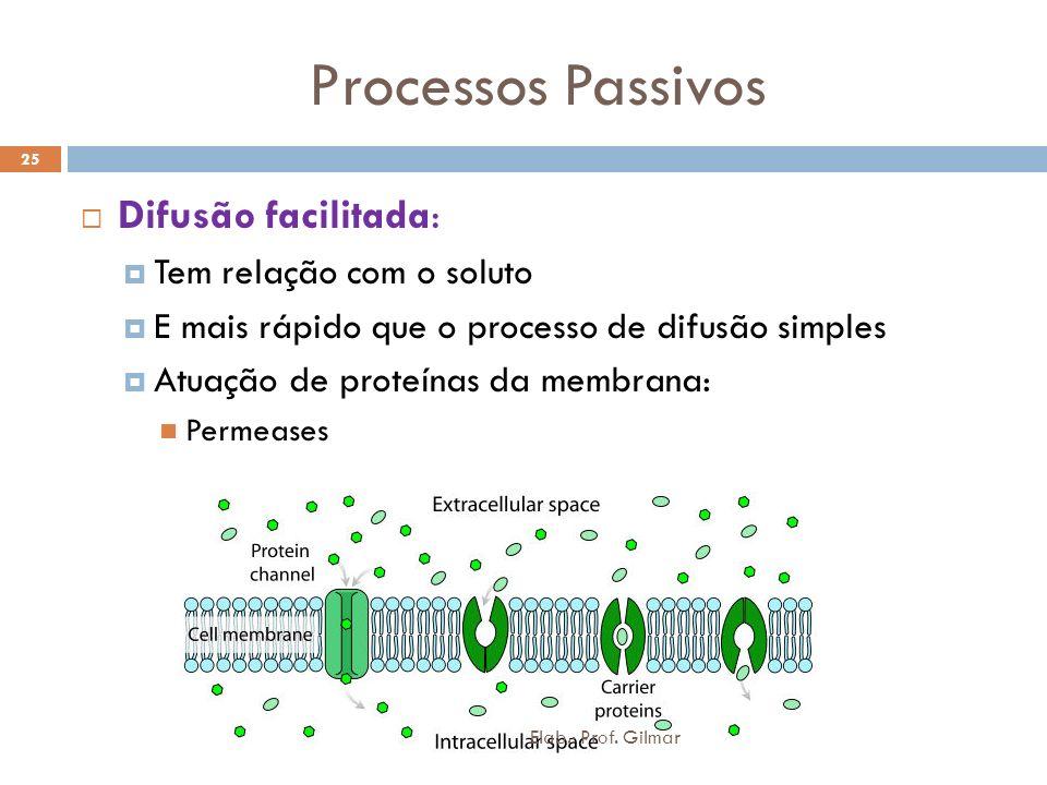 Processos Passivos Difusão facilitada: Tem relação com o soluto
