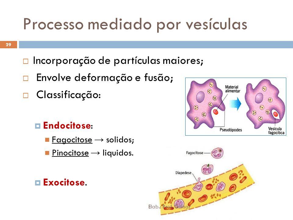 Processo mediado por vesículas