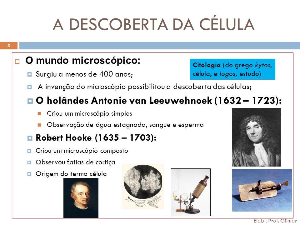 A DESCOBERTA DA CÉLULA O mundo microscópico: Surgiu a menos de 400 anos; A invenção do microscópio possibilitou a descoberta das células;