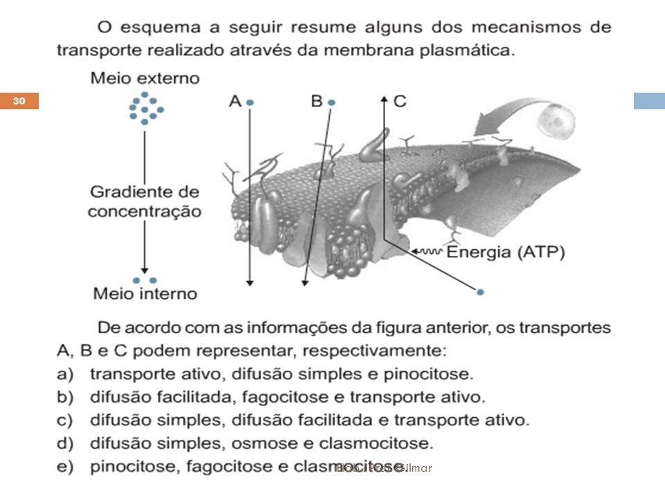 Elab.: Prof. Gilmar