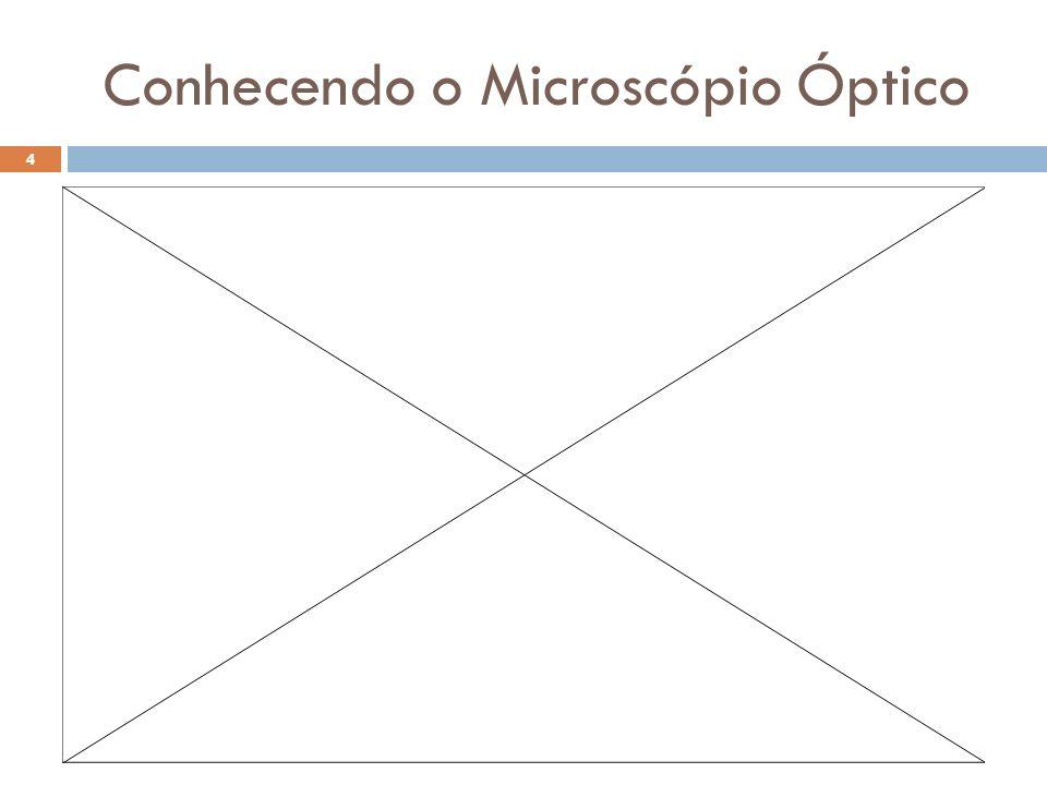 Conhecendo o Microscópio Óptico