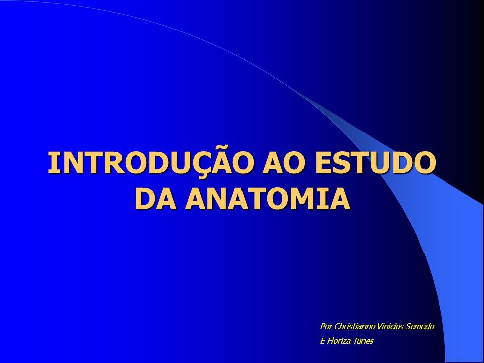 INTRODUÇÃO AO ESTUDO DA ANATOMIA