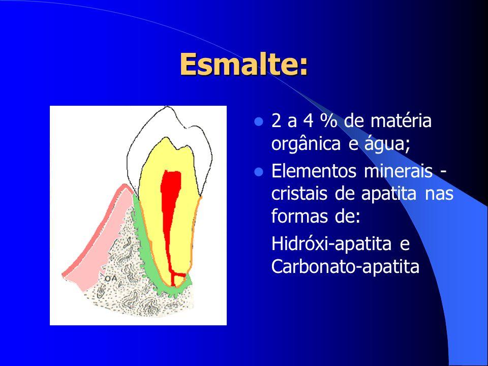 Esmalte: 2 a 4 % de matéria orgânica e água;