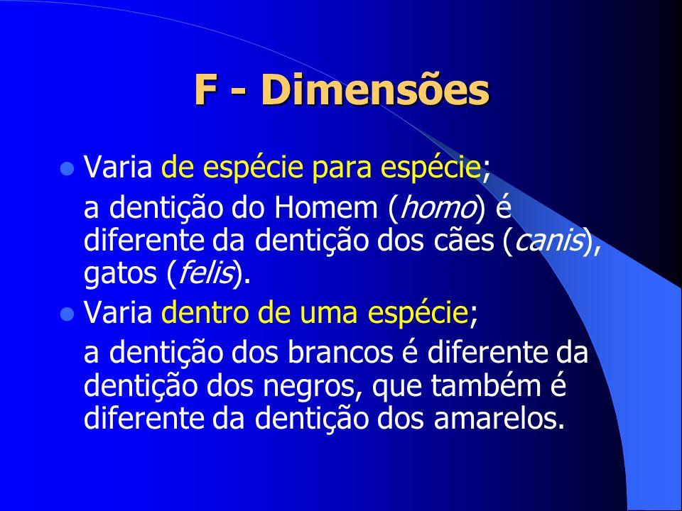 F - Dimensões Varia de espécie para espécie;