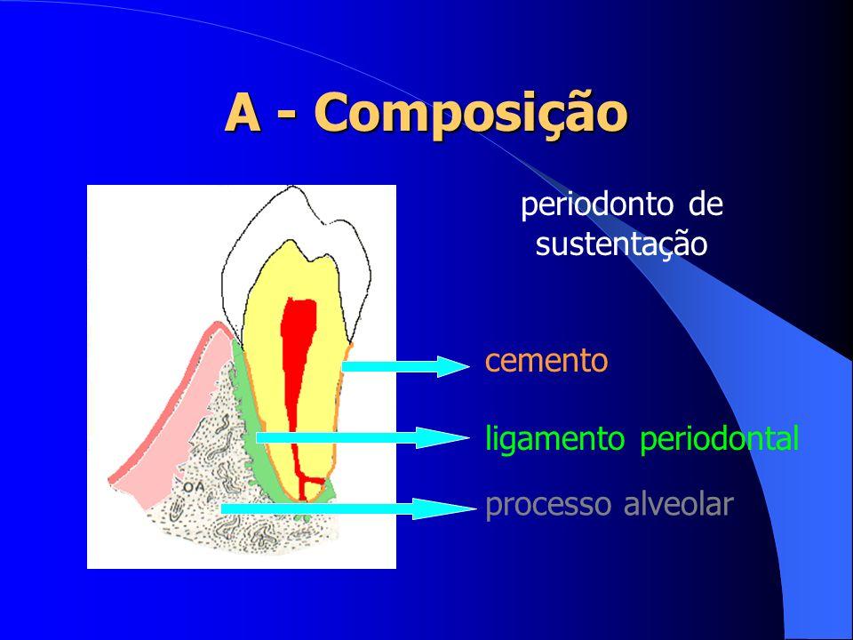 periodonto de sustentação