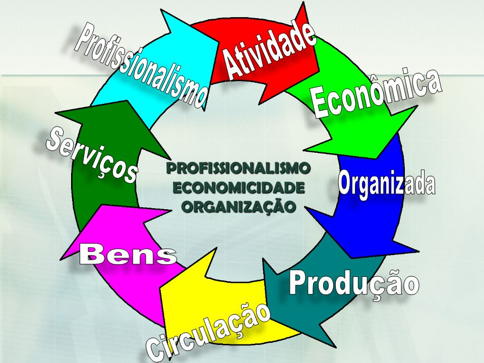 PROFISSIONALISMO ECONOMICIDADE ORGANIZAÇÃO Atividade Profissionalismo