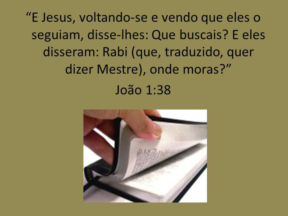 E Jesus, voltando-se e vendo que eles o seguiam, disse-lhes: Que buscais.