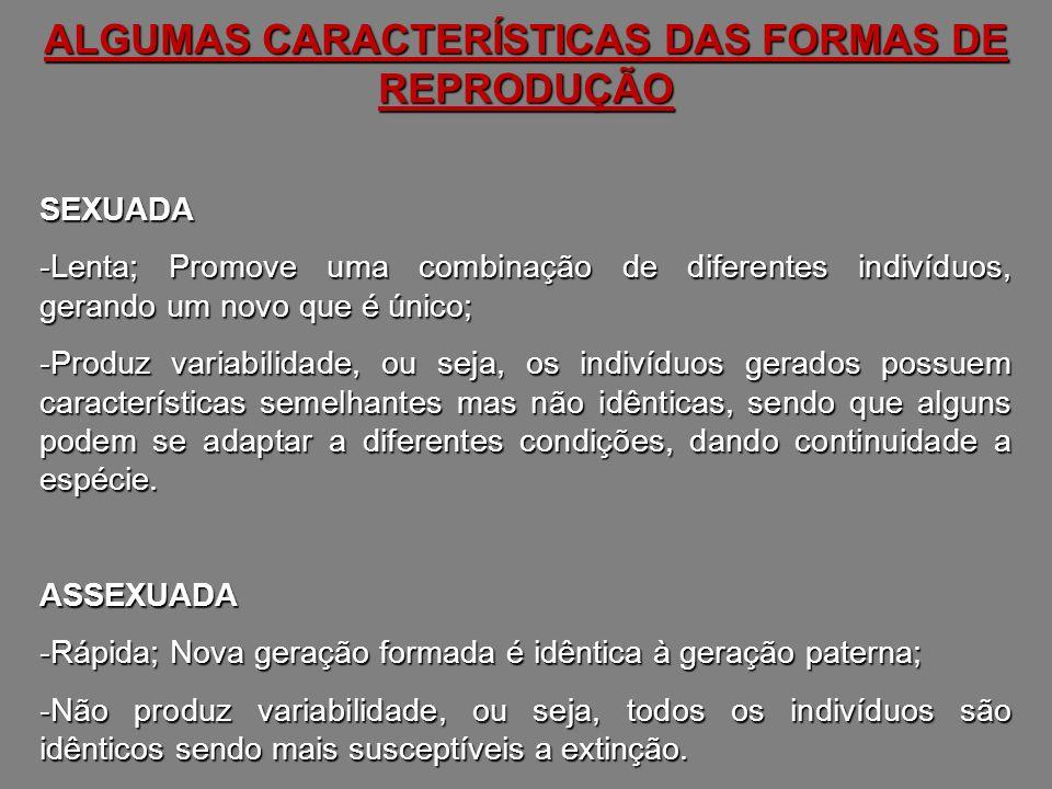 ALGUMAS CARACTERÍSTICAS DAS FORMAS DE REPRODUÇÃO