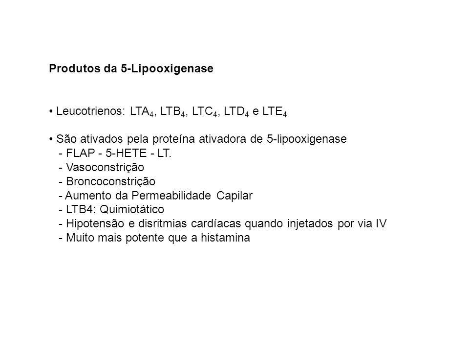 Produtos da 5-Lipooxigenase