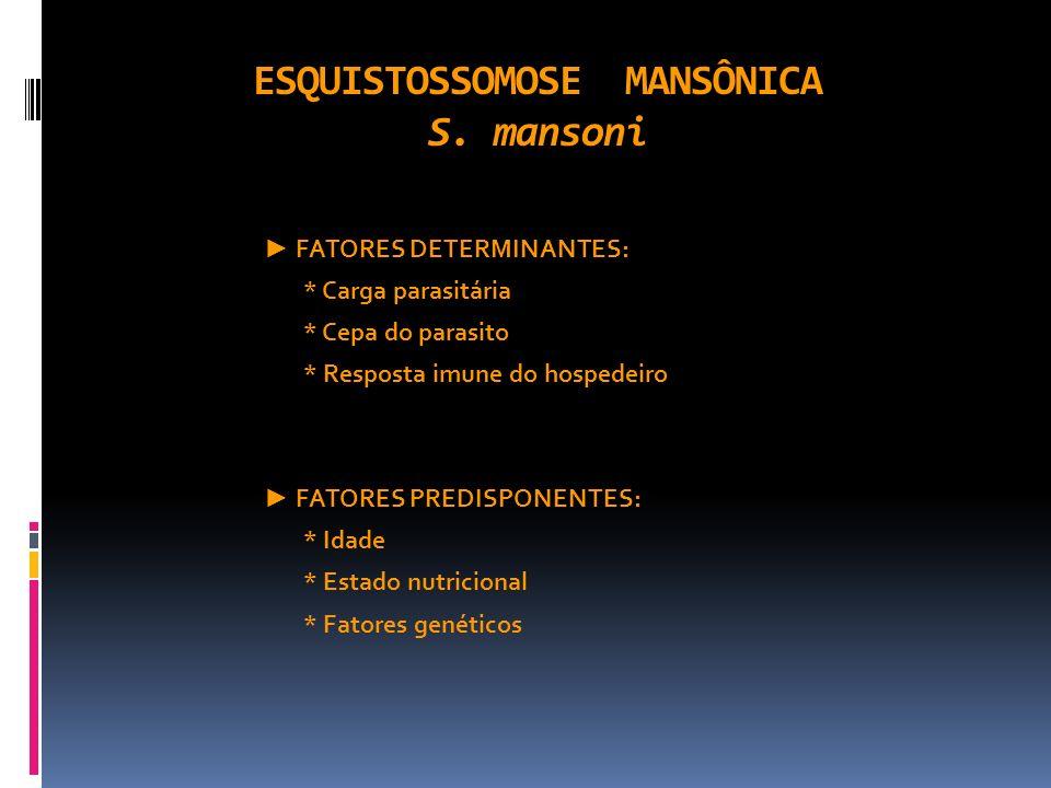 ESQUISTOSSOMOSE MANSÔNICA S. mansoni