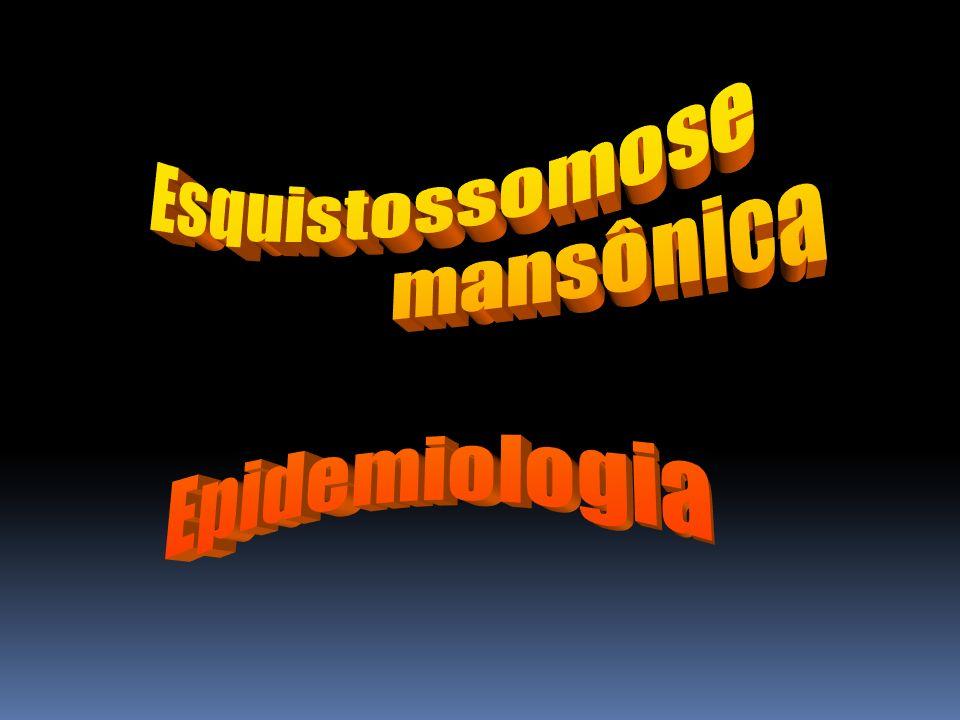 Esquistossomose mansônica Epidemiologia