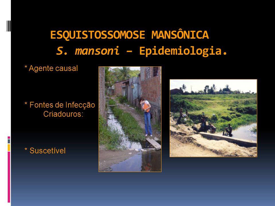 ESQUISTOSSOMOSE MANSÔNICA S. mansoni – Epidemiologia.
