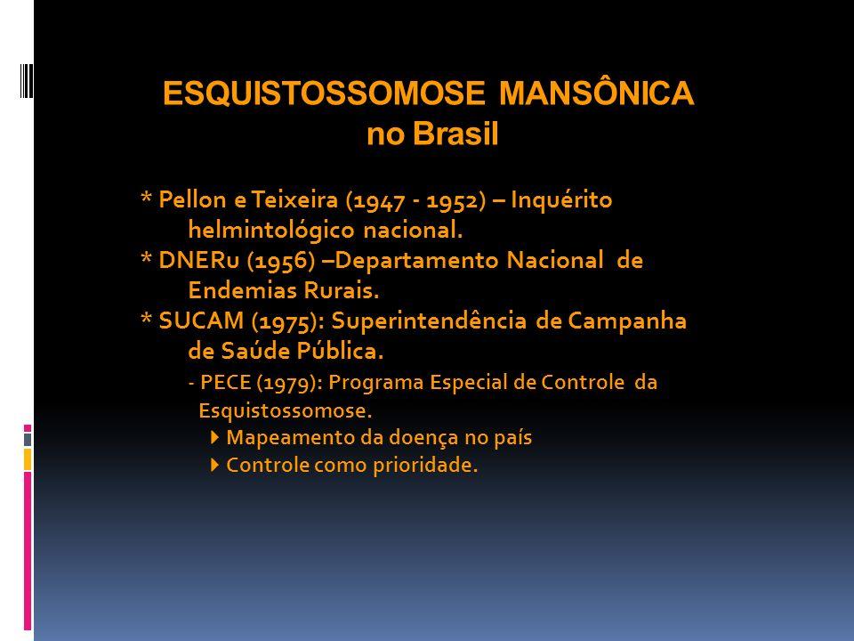 ESQUISTOSSOMOSE MANSÔNICA no Brasil