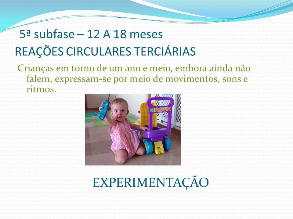 5ª subfase – 12 A 18 meses REAÇÕES CIRCULARES TERCIÁRIAS