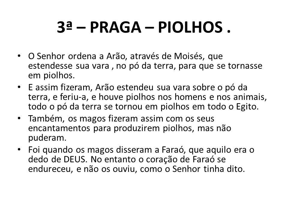 3ª – PRAGA – PIOLHOS . O Senhor ordena a Arão, através de Moisés, que estendesse sua vara , no pó da terra, para que se tornasse em piolhos.