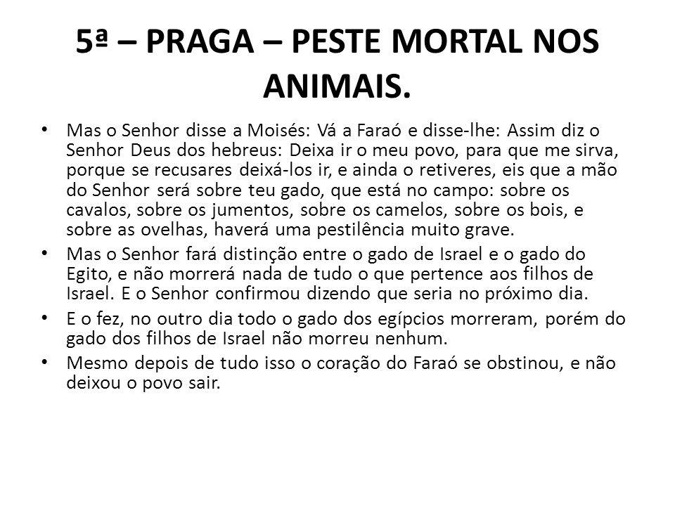 5ª – PRAGA – PESTE MORTAL NOS ANIMAIS.