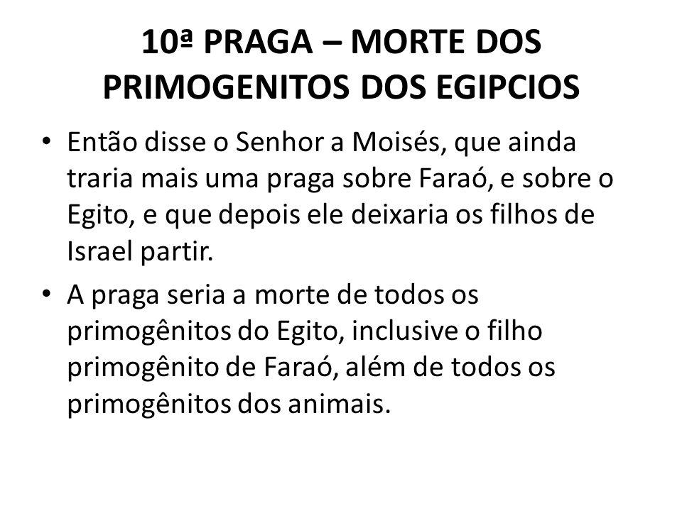 10ª PRAGA – MORTE DOS PRIMOGENITOS DOS EGIPCIOS