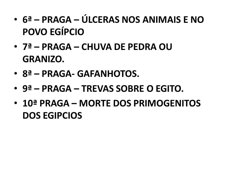 6ª – PRAGA – ÚLCERAS NOS ANIMAIS E NO POVO EGÍPCIO