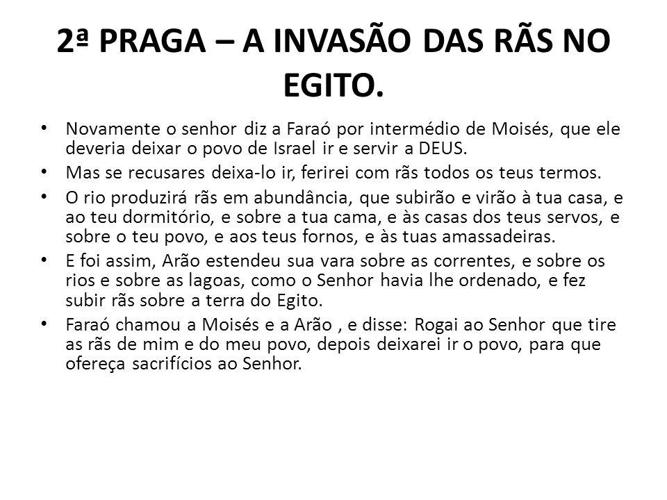 2ª PRAGA – A INVASÃO DAS RÃS NO EGITO.