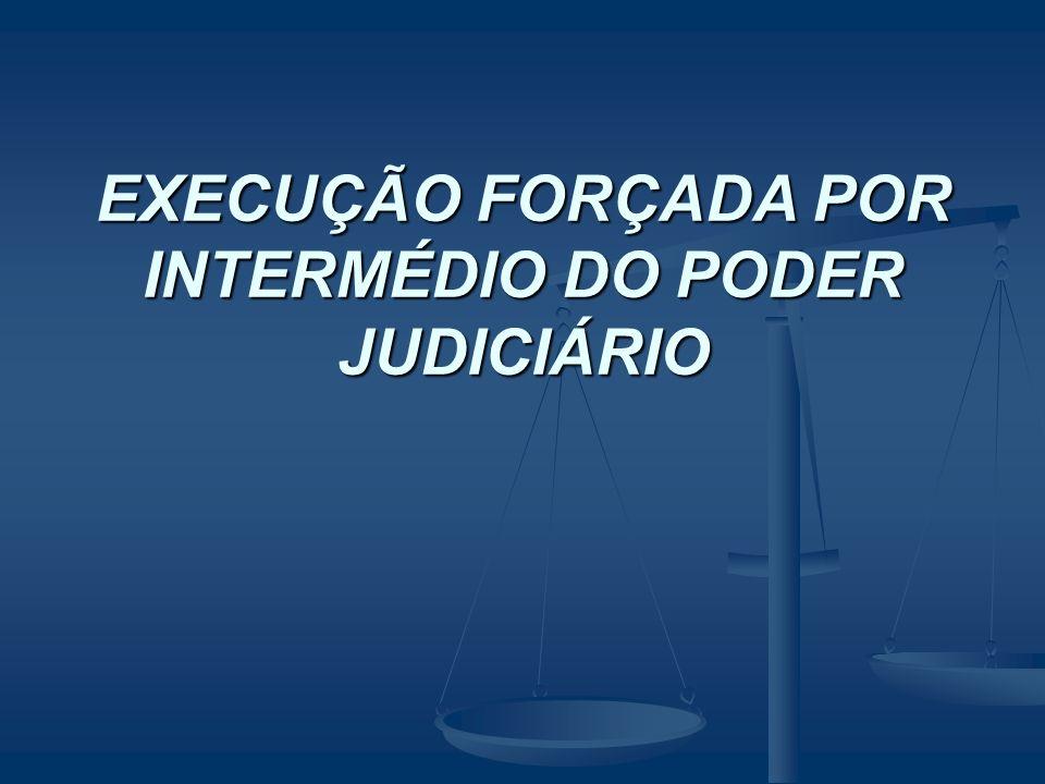 EXECUÇÃO FORÇADA POR INTERMÉDIO DO PODER JUDICIÁRIO
