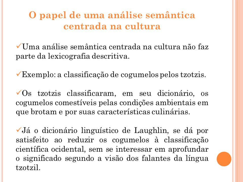 O papel de uma análise semântica centrada na cultura