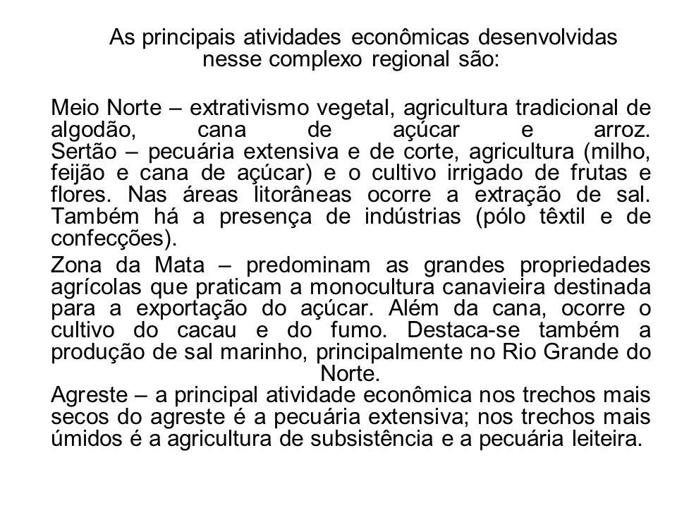 As principais atividades econômicas desenvolvidas nesse complexo regional são: