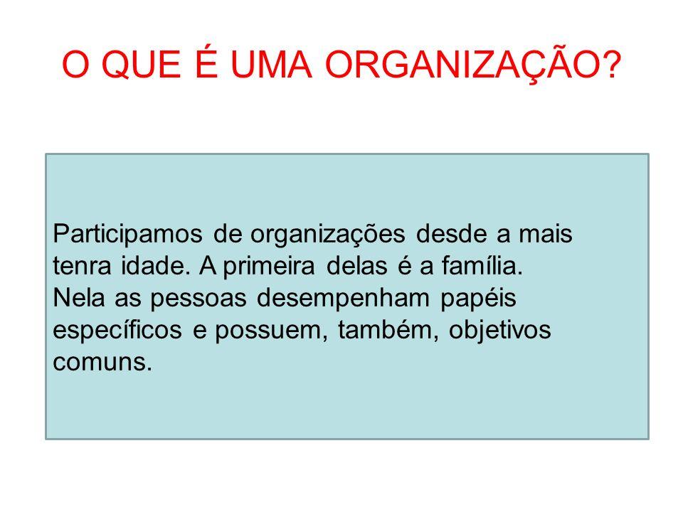 O QUE É UMA ORGANIZAÇÃO Participamos de organizações desde a mais tenra idade. A primeira delas é a família.