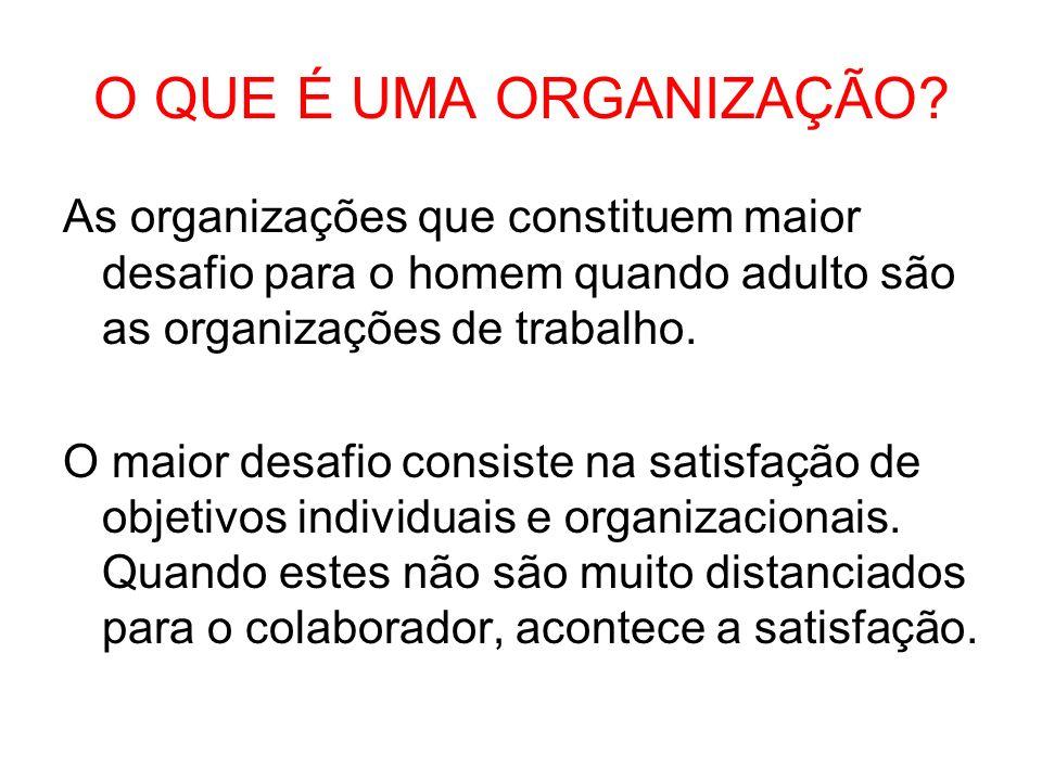O QUE É UMA ORGANIZAÇÃO As organizações que constituem maior desafio para o homem quando adulto são as organizações de trabalho.