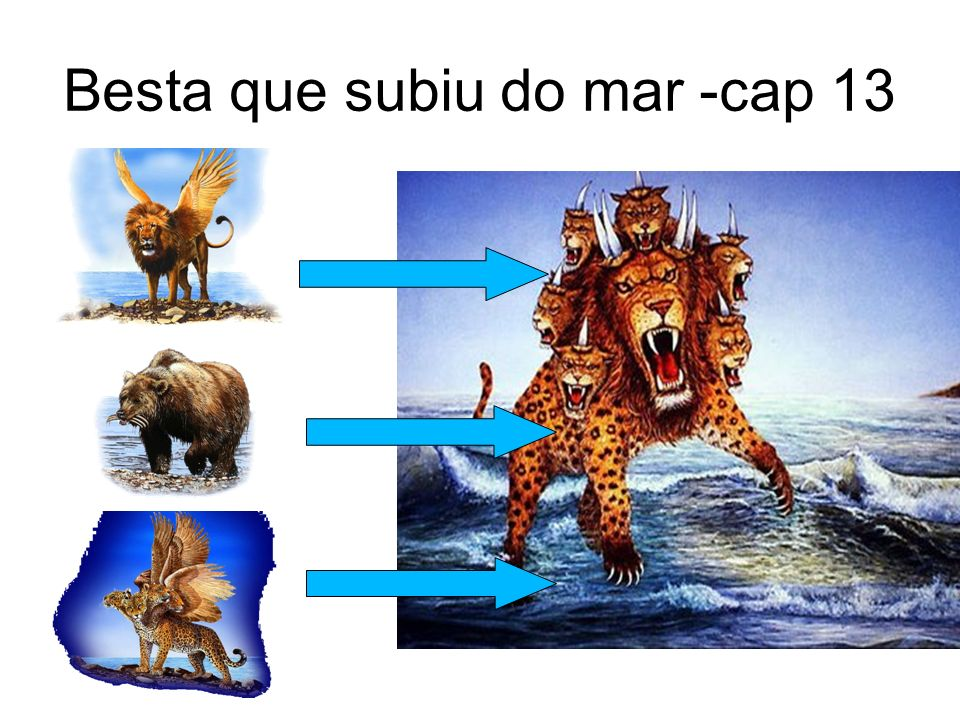 Besta que subiu do mar -cap 13