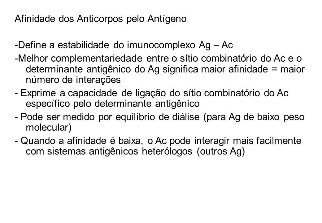 Afinidade dos Anticorpos pelo Antígeno -Define a estabilidade do imunocomplexo Ag – Ac -Melhor complementariedade entre o sítio combinatório do Ac e o determinante antigênico do Ag significa maior afinidade = maior número de interações - Exprime a capacidade de ligação do sítio combinatório do Ac específico pelo determinante antigênico - Pode ser medido por equilíbrio de diálise (para Ag de baixo peso molecular) - Quando a afinidade é baixa, o Ac pode interagir mais facilmente com sistemas antigênicos heterólogos (outros Ag)