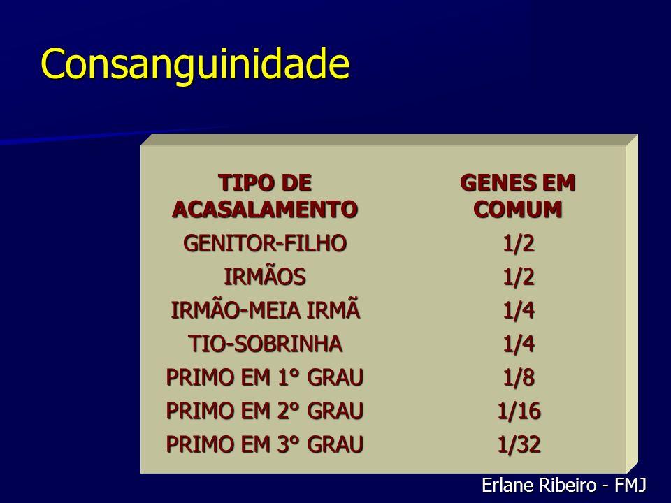 Consanguinidade TIPO DE ACASALAMENTO GENES EM COMUM GENITOR-FILHO 1/2