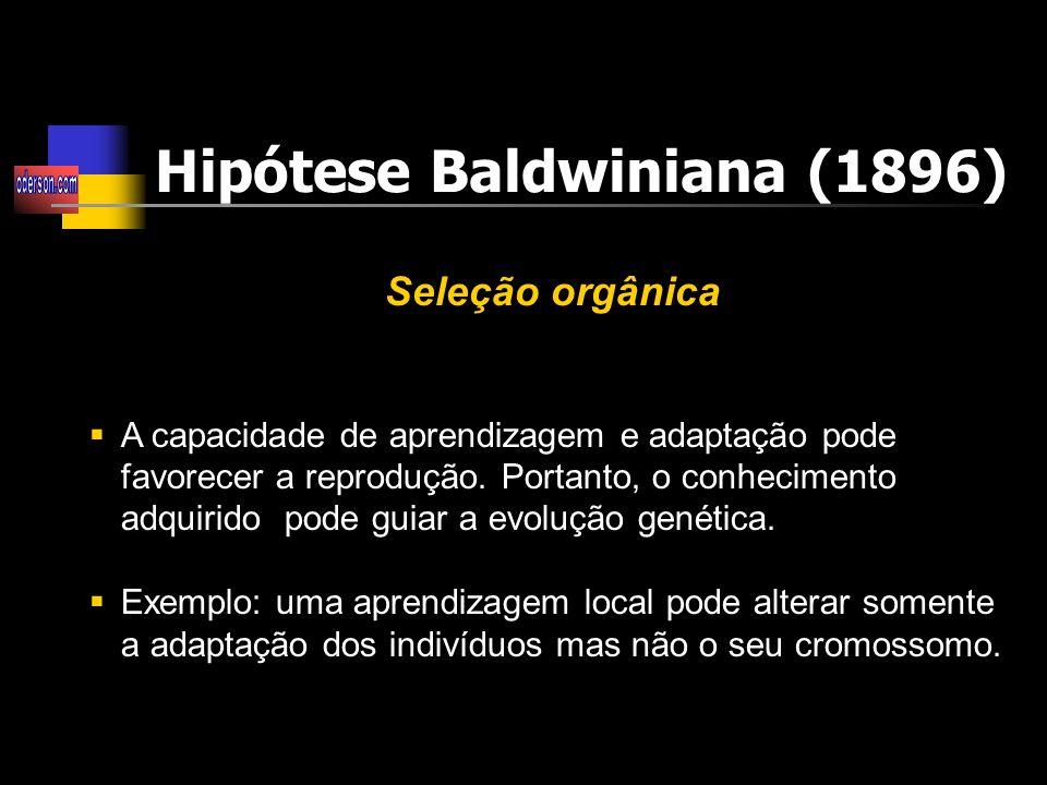 Hipótese Baldwiniana (1896)