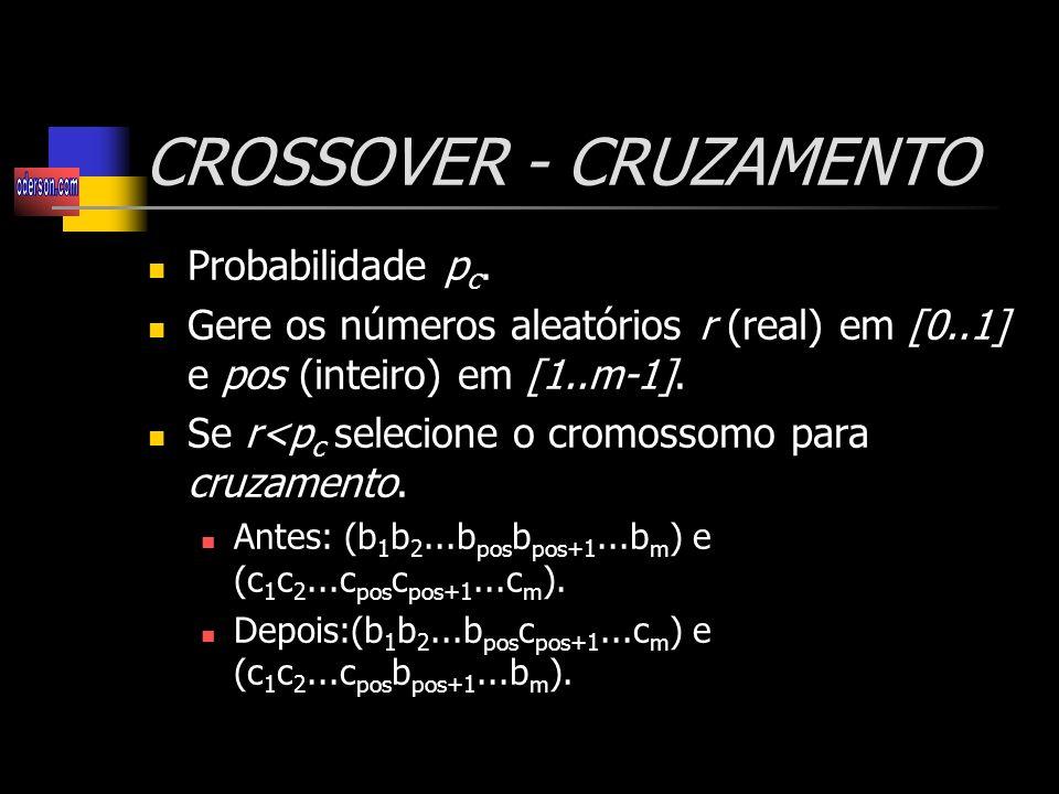 CROSSOVER - CRUZAMENTO