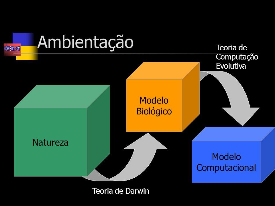 Ambientação Modelo Biológico Natureza Modelo Computacional