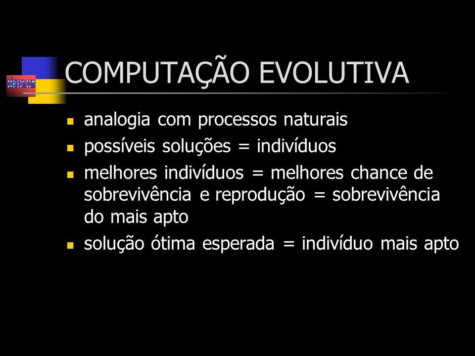 COMPUTAÇÃO EVOLUTIVA analogia com processos naturais