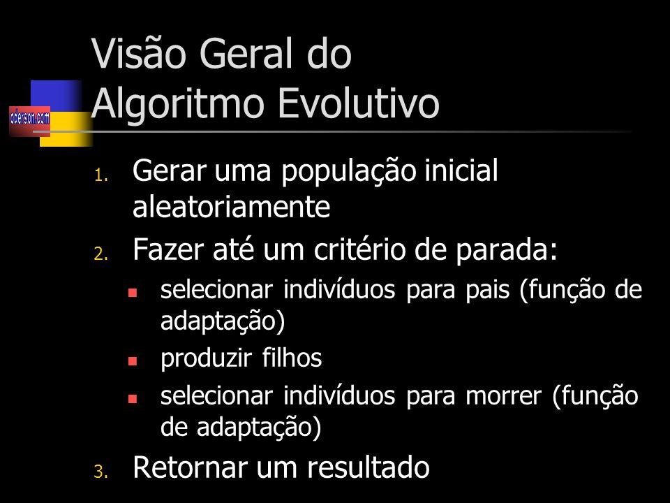Visão Geral do Algoritmo Evolutivo