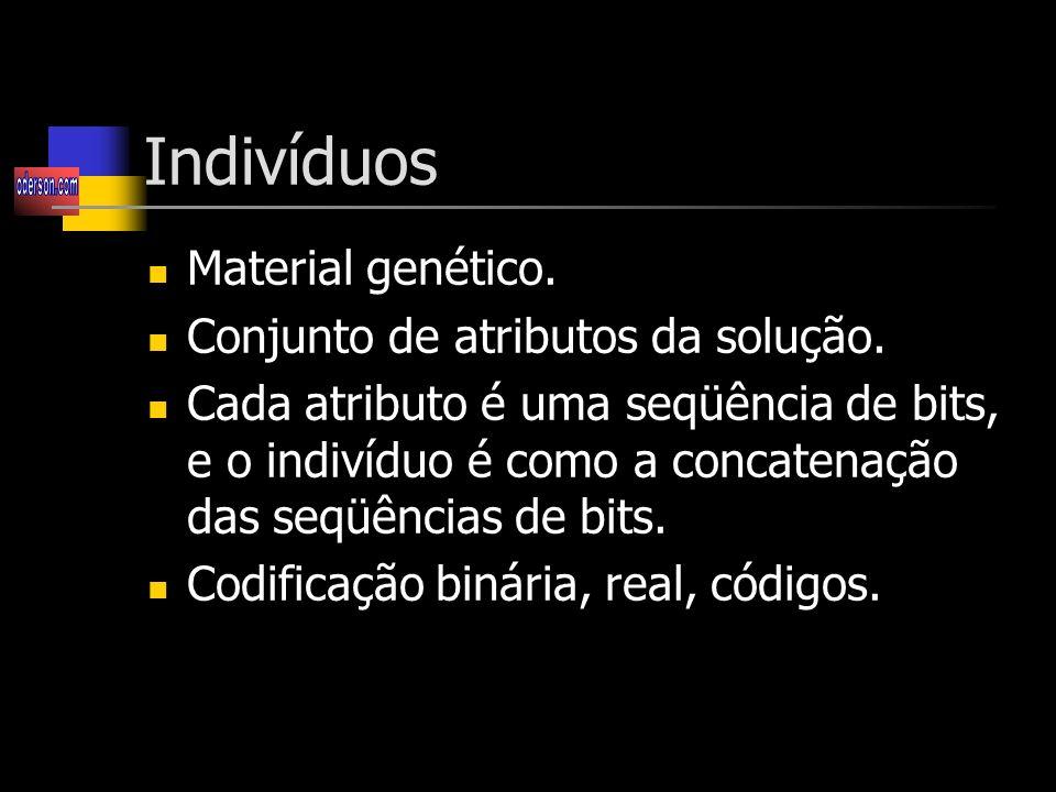 Indivíduos Material genético. Conjunto de atributos da solução.