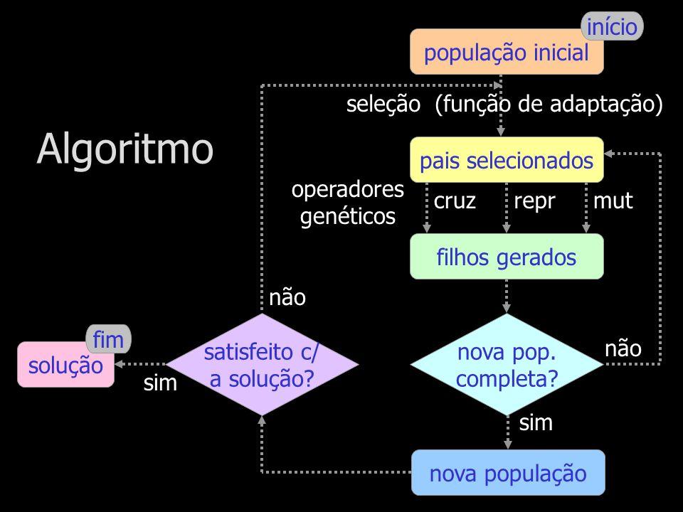 seleção (função de adaptação)