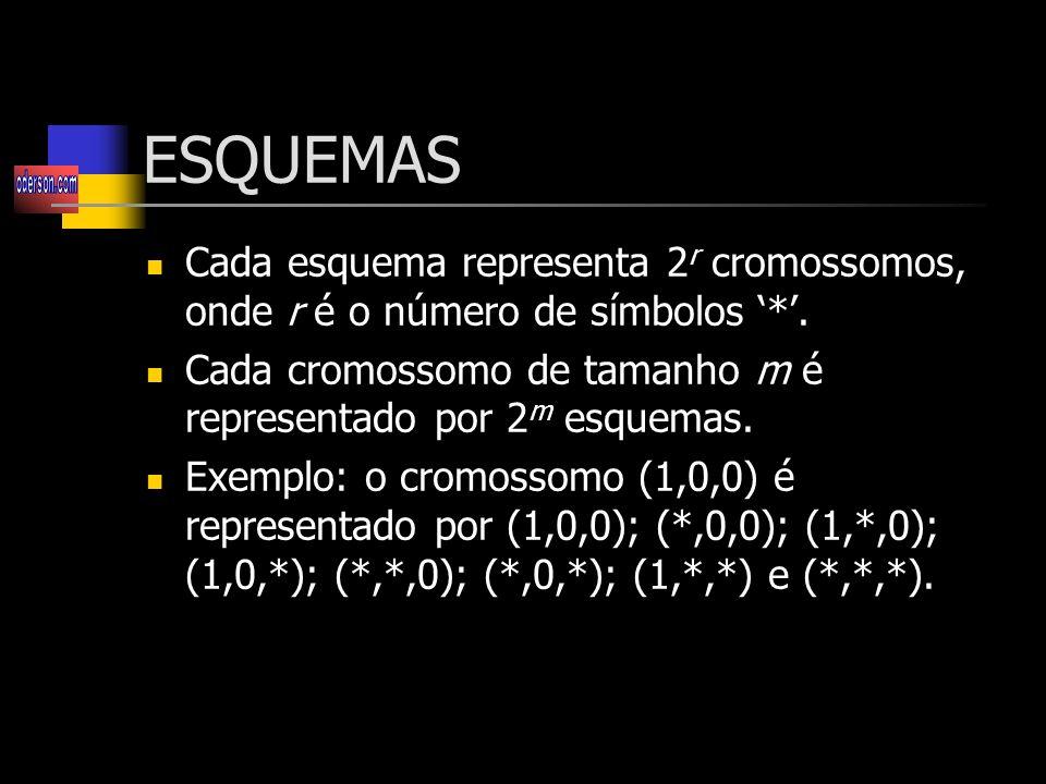 ESQUEMAS Cada esquema representa 2r cromossomos, onde r é o número de símbolos '*'. Cada cromossomo de tamanho m é representado por 2m esquemas.