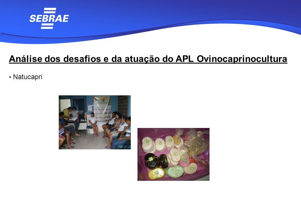 Análise dos desafios e da atuação do APL Ovinocaprinocultura