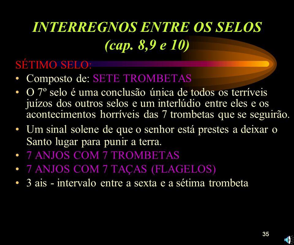 INTERREGNOS ENTRE OS SELOS (cap. 8,9 e 10)